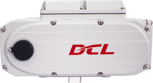 Feb. - Sept. 2005: L Type (DCL-100, 160, 200 Series) successfully developed;